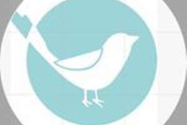Little Bird Cafe Logo